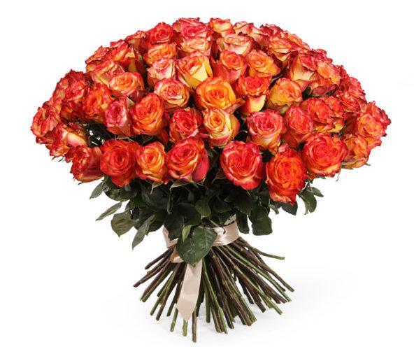 Для мужчин, 101 роза оптом салават
